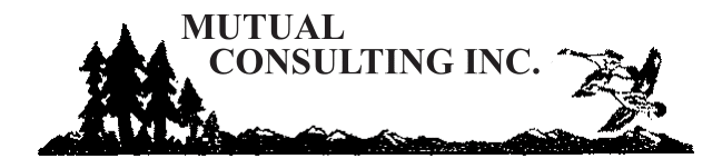 Mutual Safety Consulting